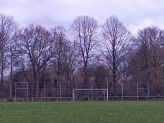 Neuer Ballfang am Rasenplatz